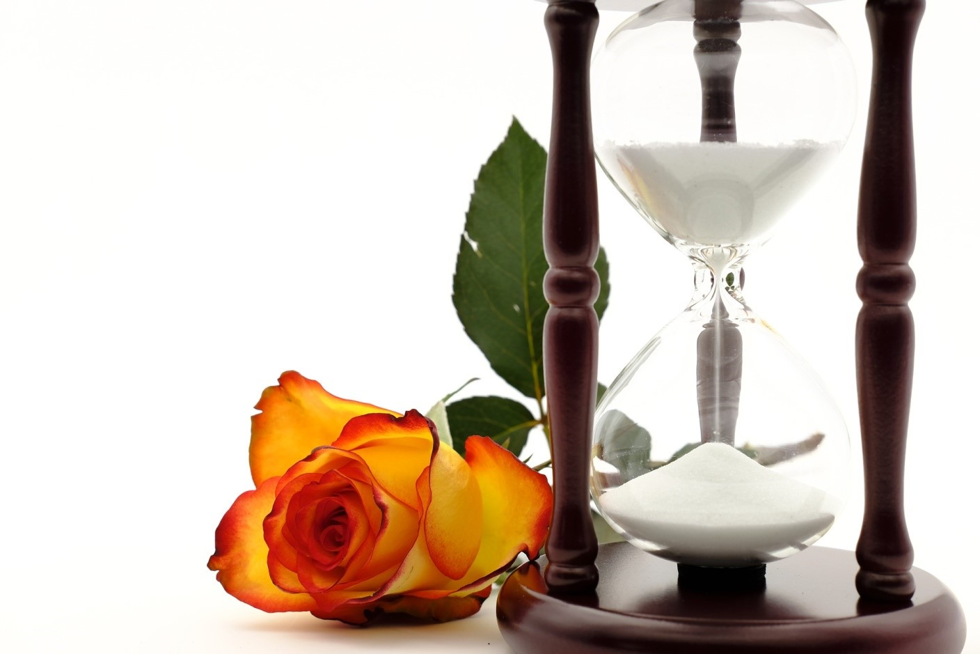 hourglass and rose
